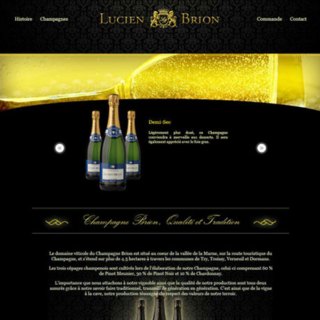 Screenshot of Champagne Brion's website